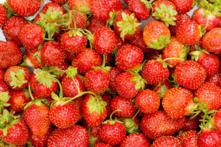 Lots of strawberries arranged as the background Stock Photo - 3793416