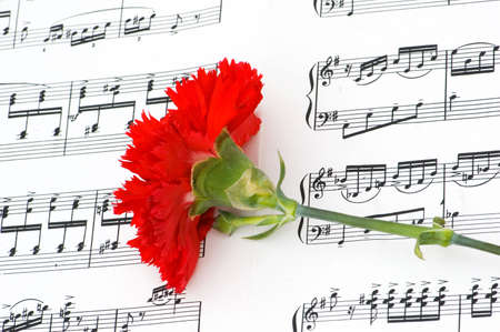 romatic: Romatic concept - red carnations flower on musical notes page