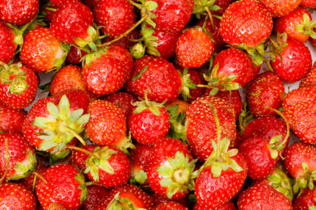 Lots of strawberries arranged as the background Stock Photo - 4160194