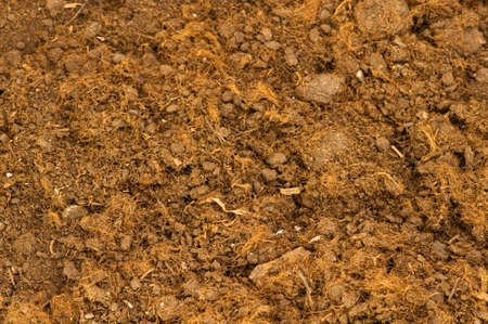 Close up of soil as a background Stock Photo - 4790195