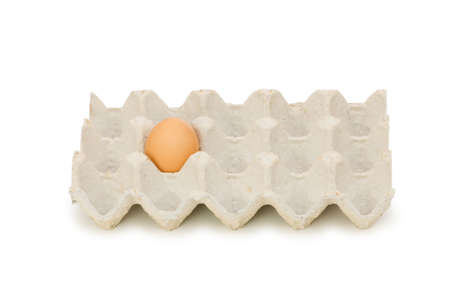 Single egg in carton isolated on white Stock Photo - 4861675