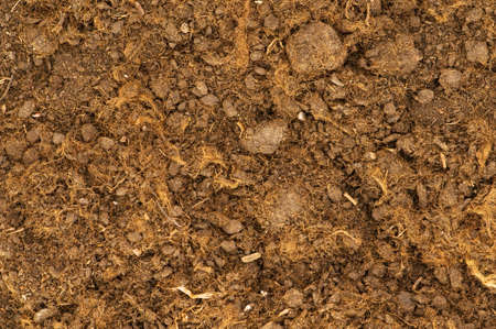 Close up of soil as a background Stock Photo - 4877145