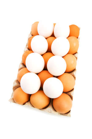 Lots of eggs in the carton isolated on white photo