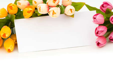 Tulips and blank message isolated on white Stock Photo - 5282635