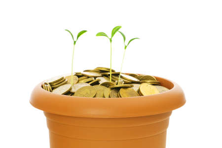 Green seedling growing from the pile of coins Stock Photo - 5314259