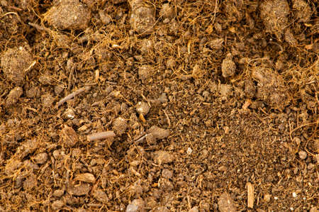 Close up of soil as a background Stock Photo - 5348996