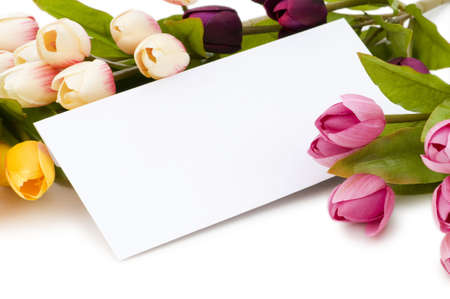 Tulips and blank message isolated on white Stock Photo - 5436530