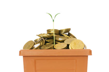 Green seedling growing from the pile of coins Stock Photo - 5493323