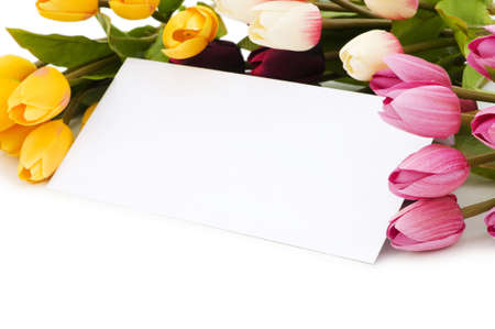 Tulips and blank message isolated on white photo