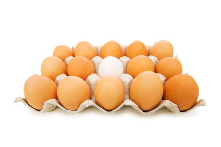 Stand out of crowd concept with eggs on white photo
