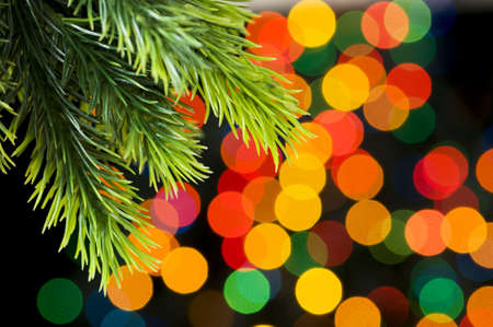 Close up of tree against blurred lights Stock Photo - 5658283