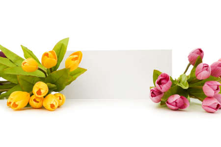 Tulips and blank message isolated on white Stock Photo - 5718402