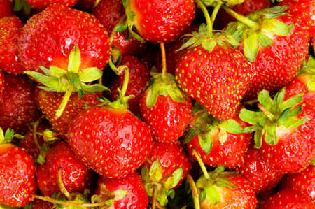 Lots of strawberries arranged as the background Stock Photo - 5922996
