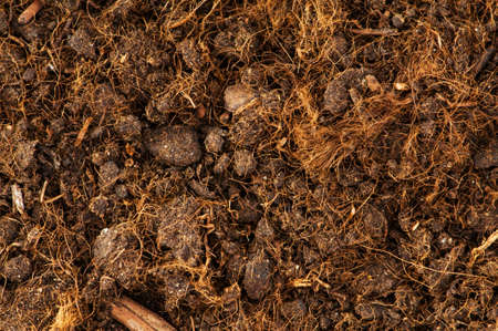 Close up of soil as a background Stock Photo - 5963019
