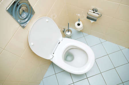 Toilet in the bathroom Stock Photo - 5963119