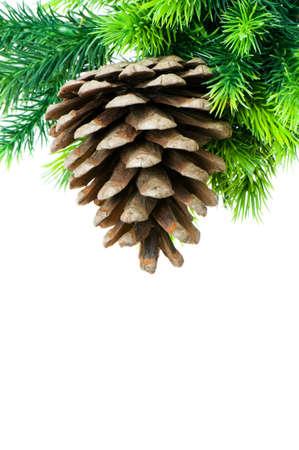 Christmas tree isolated on the white background photo