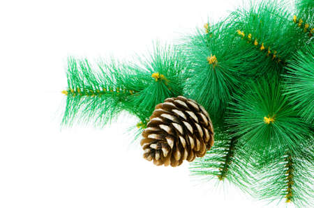 Christmas tree isolated on the white background Stock Photo - 6040455