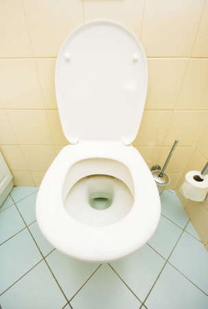 Toilet in the bathroom Stock Photo - 6040862