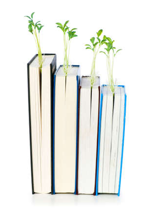 Knowledge concept with books and seedlings Stock Photo - 6291132