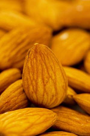 Fresh almonds arranged on the white background Stock Photo - 6314120