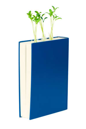 Knowledge concept with books and seedlings Stock Photo - 6373748