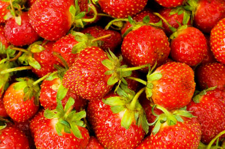 Lots of strawberries arranged as the background Stock Photo - 6457959