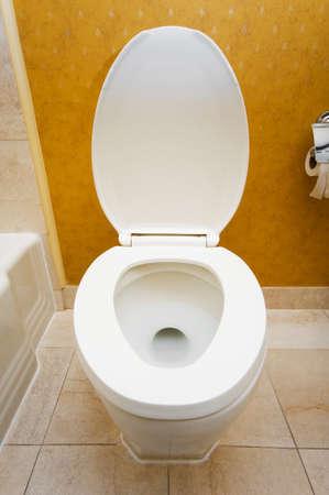 Toilet in the bathroom Stock Photo - 7004639