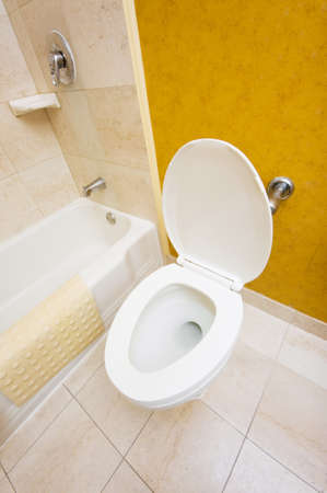 Toilet in the bathroom Stock Photo - 7045806