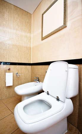 Toilet in the bathroom Stock Photo - 7322953