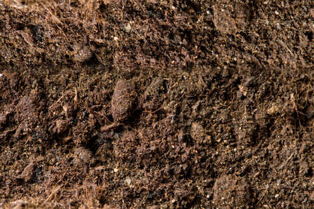 Close up of soil - can be used as background Stock Photo - 7546226