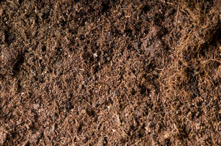 Close up of soil - can be used as background Stock Photo - 7597702