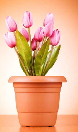 Bunch of tulip flowers on the table Stock Photo - 7597450