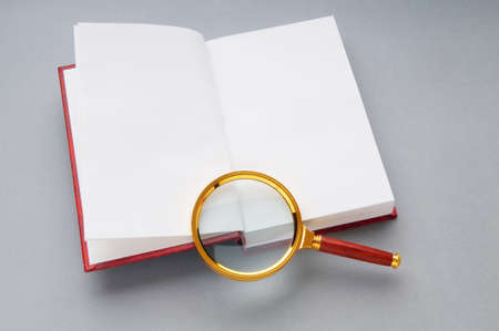 Magnifying glass over the stack of books Stock Photo - 8459989