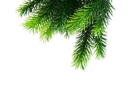 Christmas decoration isolated on the white background Stock Photo - 8459878