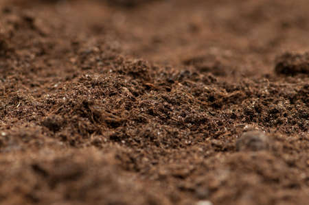 Close up of soil - can be used as background Stock Photo - 8616132