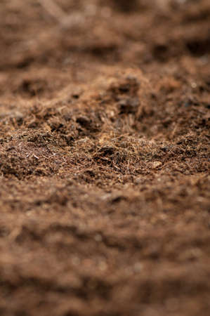 Close up of soil - can be used as background Stock Photo - 8657019