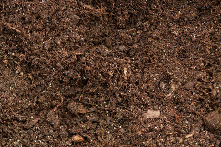 Close up of soil - can be used as background photo