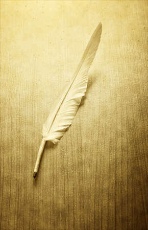 Writing feather on the background photo
