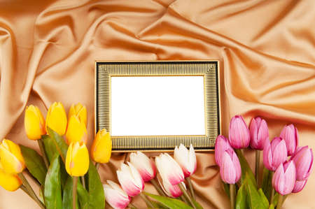 flower photos: Picture frames and tulips flowers on satin