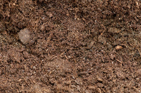 Close up of soil - can be used as background Stock Photo - 8881989