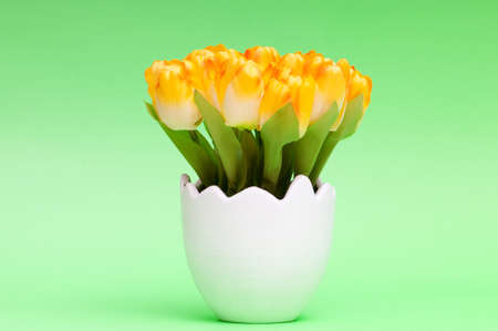Colorful tulip flowers in the white pot Stock Photo - 9542201