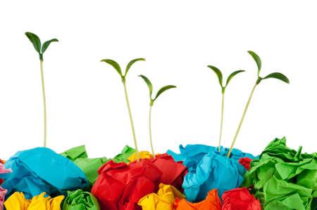 reciclar: Papel reciclado concepto con las plantas de semillero en blanco