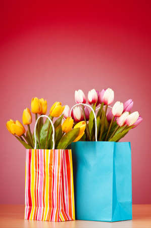 Tulips in the bag against gradient background Stock Photo - 9546520