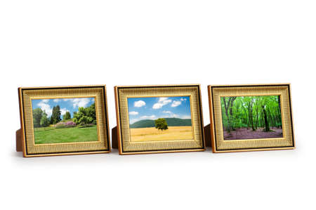 Forest on the picture frames Stock Photo - 9918141