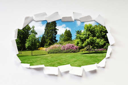 Torn paper with trees through the hole Stock Photo - 9917702