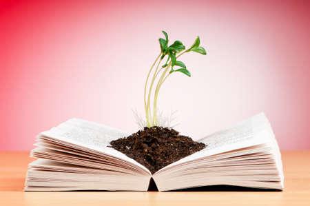 literatura: Concepto de conocimiento con los libros y las plantas de semillero