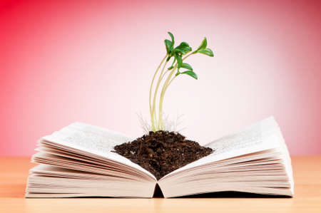 Knowledge concept with books and seedlings photo