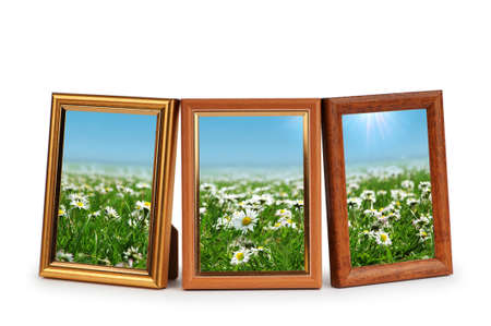 buttercup flower: Daisy flowers in the picture frames on white Stock Photo
