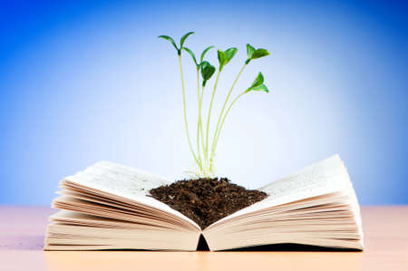 Seedlings growing from book in knowledge concept photo