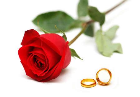 svatba: Svatební koncept s růží a kroužky
